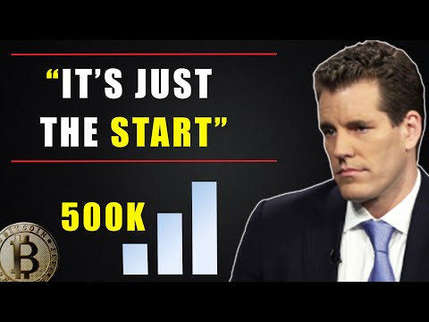 "How High will Bitcoin Go ?  Winklevoss Twins "" This is just the start of 2021"""