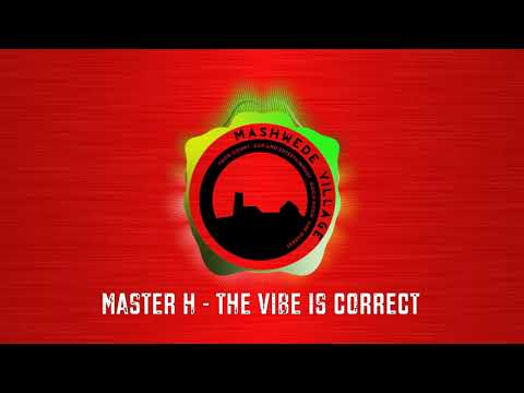 MASTER H - THE VIBE IS CORRECT